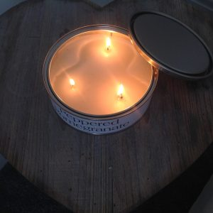 Pintail candles, 3 wick, £12